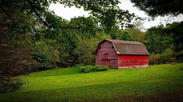 Como reverter uma propriedade rural improdutiva