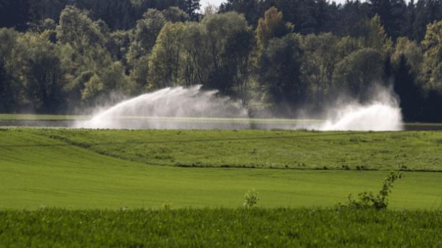 Irrigação de pastagens é método simples para o pasto seco