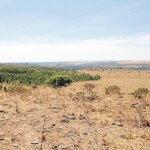 Degradação do solo: saiba como evitar