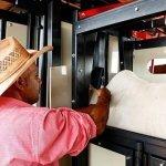 Tronco para vacinação de gado: posso usar o eletrônico?