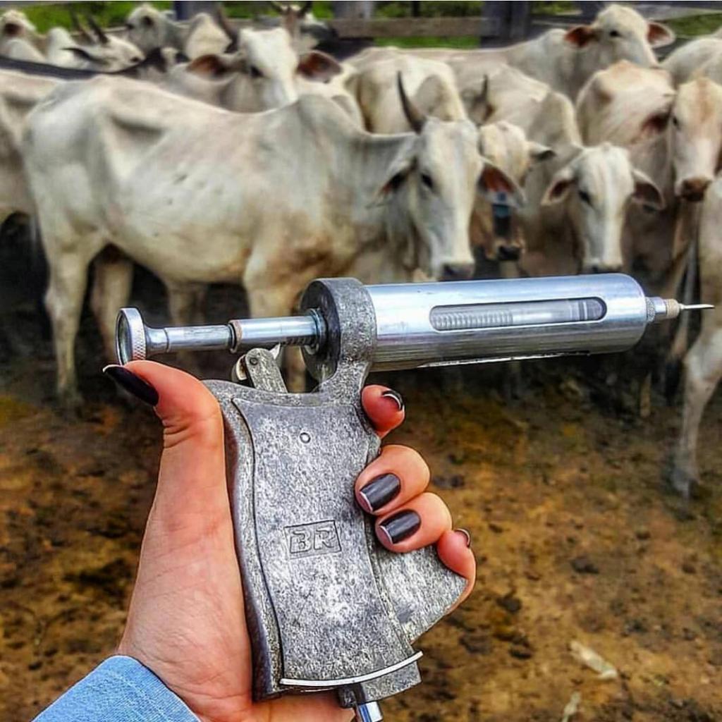 vacina de botulismo bovino