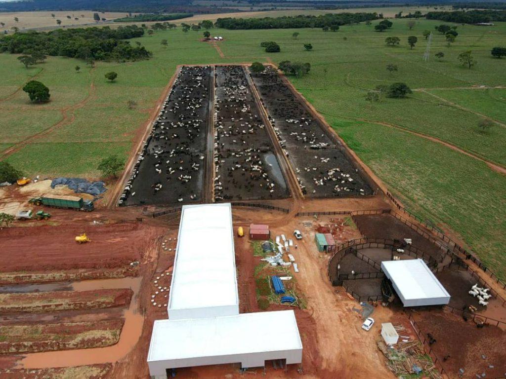 estrutura de confinamento de gado